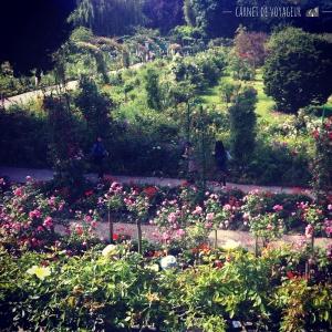 jardin de giverny, clos normand, vue de la maison de monet